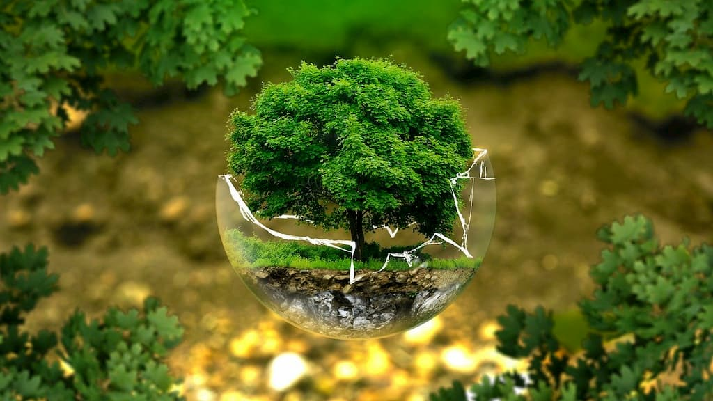 フレキシタリアン最強説の根拠②:環境の保護になる