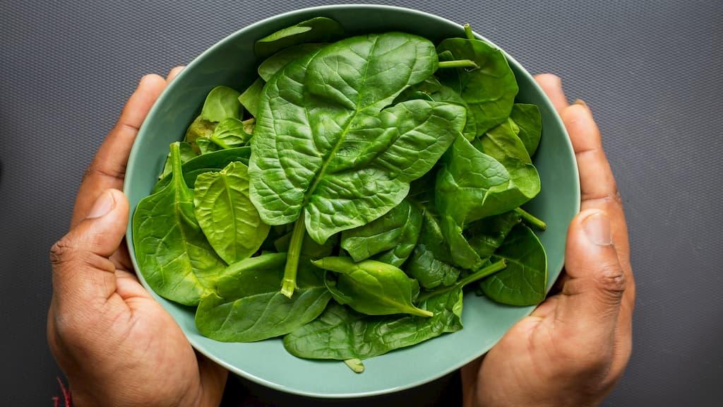 緑の葉物野菜にはどんなものが含まれる?