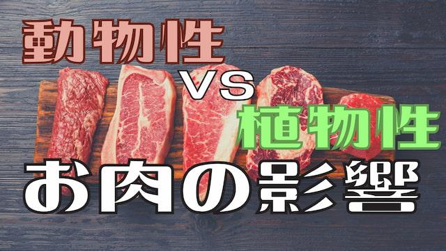 【驚きの結果】「植物性と動物性のお肉の体への影響を調べました」な実験