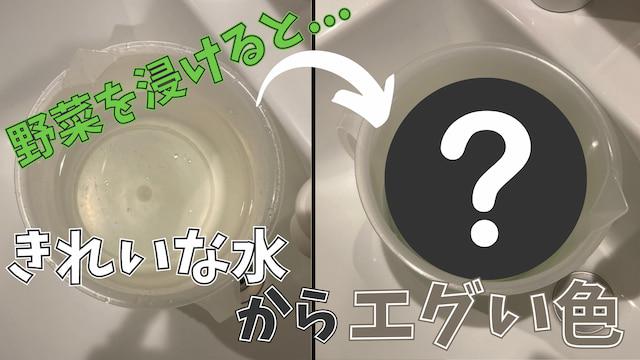 【驚愕】野菜を農薬低減水につけたら水が透明から◯色に!