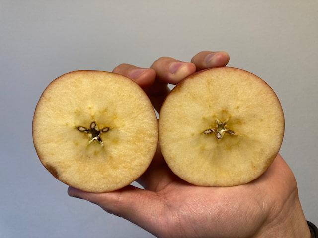 並んだリンゴ